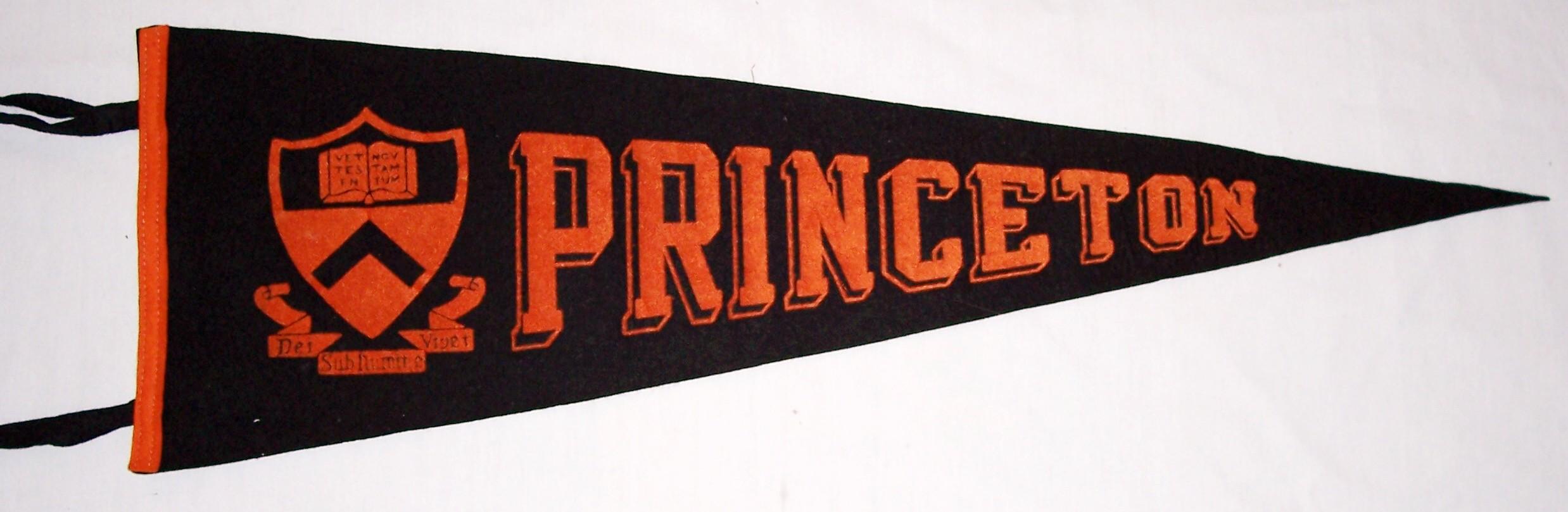 Amazon.com : Princeton Tigers University Large College Flag ...